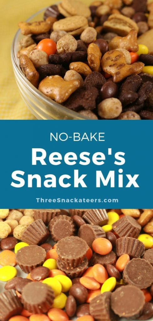 Reese's Snack Mix Pin