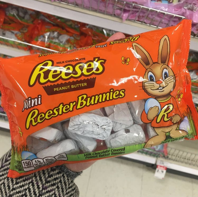 Miniature Reester Bunnies