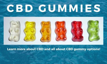 How To Choose the Best CBD Gummies