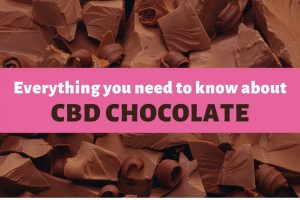 Where To Buy The Best CBD Chocolate (6 Delicious Products To Try)