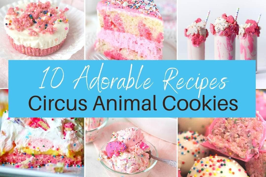 10 Fun and Easy Circus Animal Cookie Recipes