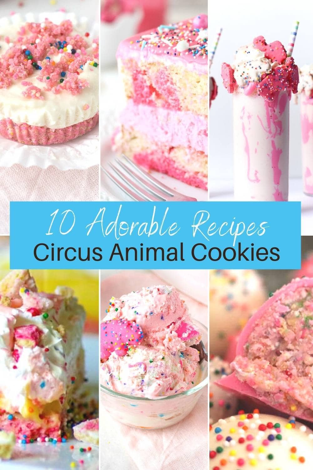 10 Fun and Easy Circus Animal Recipes