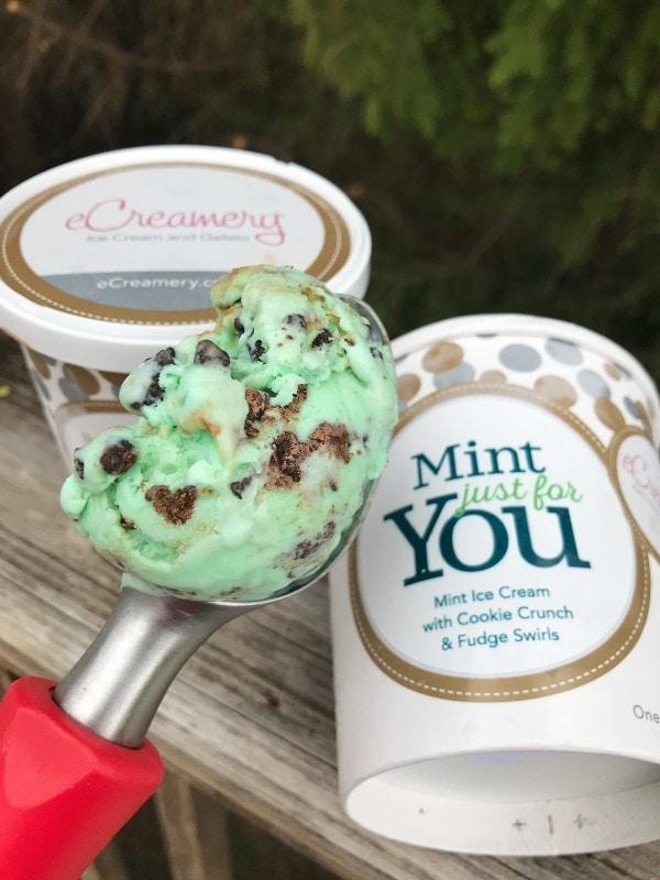 eCreamery Ice Cream Mint Cookie Crunch