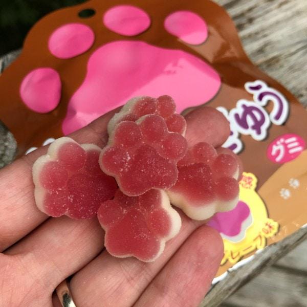 Tokyo Treat Gummy Snack